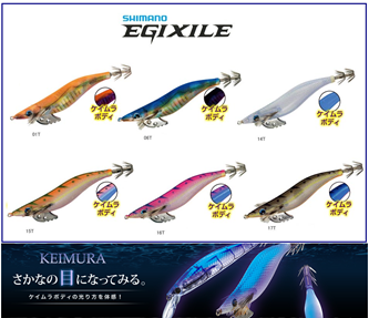 Picture for category SHIMANO EGIXILE