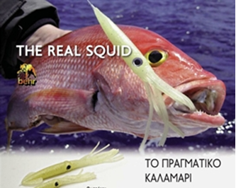 Picture for category REAL SQUID