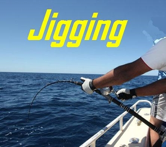 Picture for category Jigging
