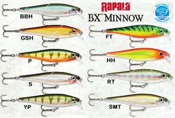 Picture of RAPALA BX MINNOW BXM10