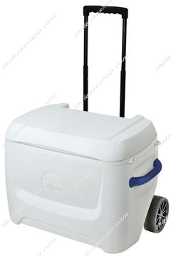 Picture of IGLOO MARINE BREEZE MAXCOLD 50 ROLLER (47L)
