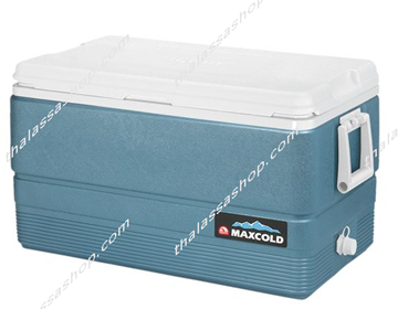 Picture of IGLOO MAXCOLD 70(66L)
