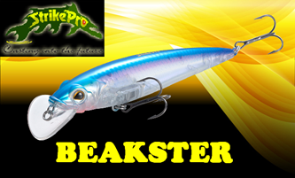 Picture for category BEAKSTER