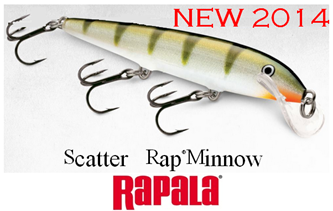 Picture for category SCATTER RAP MINNOW