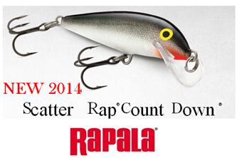 Εικόνα για την κατηγορία SCATTER RAP COUNTDOWN