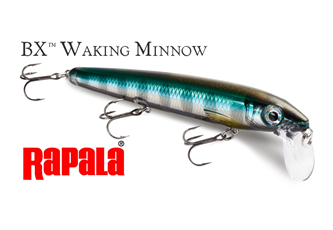 Picture for category BX WALKING MINNOW(BXMW)