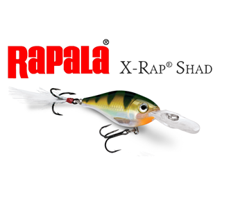 Picture for category X-RAP SHAD