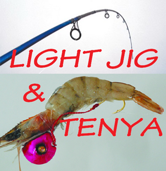 Picture for category Tenya & Light Jig