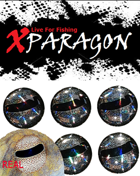 Picture of X-PARAGON LIVE EYES 4D OCTOPUS SILVER 9015