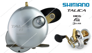 Picture of SHIMANO Talica 8 (single speed)