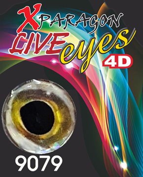 Picture of X-PARAGON LIVE EYES 4D 9079
