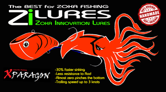 Picture for category Zi LURES