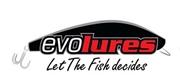 Picture for manufacturer EVOLURES