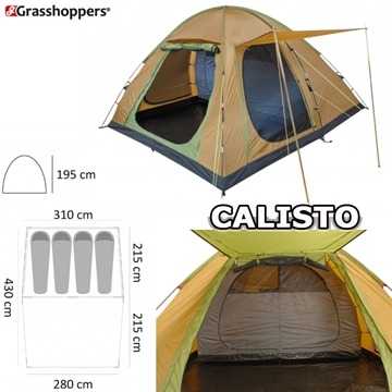 Picture of GRASSHOPPERS CALLISTO