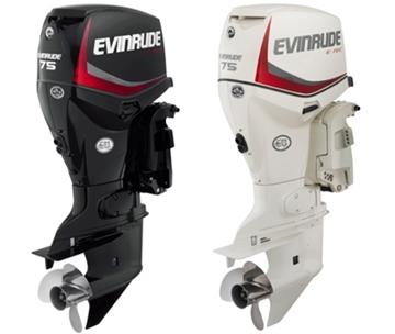 Εικόνα της EVINRUDE E-TEC 75 HP