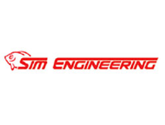 Picture for category SIM ENGINEERING
