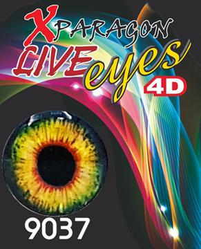 Εικόνα της X-PARAGON LIVE EYES 4D 9037